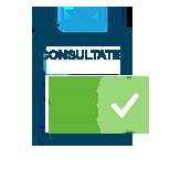 consult-3